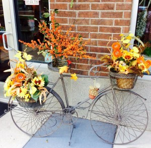 seasonal and fall decor