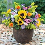 Urban Earth Wildflower Centerpiece Event Flowers