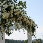 Hydrangeas Roses Dahlias | Wedding Flowers