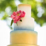Wedding Cake Flowers | Texas Blooms
