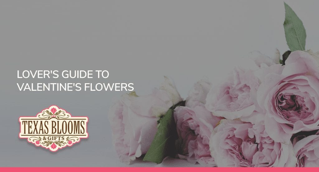 LOVER'S GUIDE TO VALENTINE'S FLOWERS