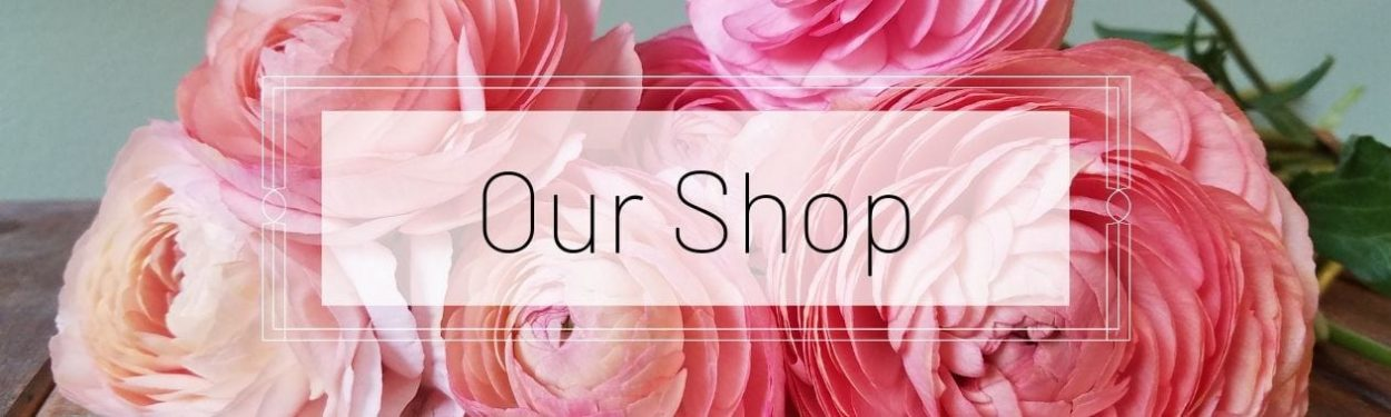 Our Shop - Texas Blooms & Gifts, Florist in Austin, TX